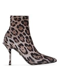 Botines de elástico de leopardo marrónes de Dolce & Gabbana