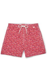 Shorts de baño estampados rosa de Isaia