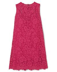 Vestido recto de encaje rosa de Dolce & Gabbana